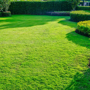 lawn care and landscaping in in Sioux falls south Dakota